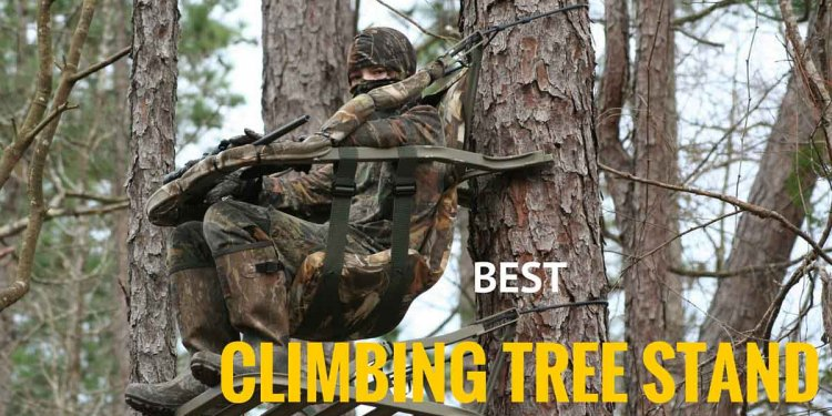 Best Climbing Tree Stands to