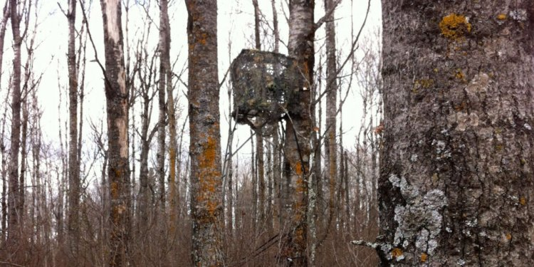 Big Game Tree Stand Blinds