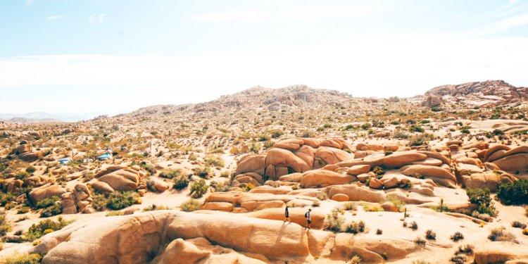 Climbing & Bouldering in Los