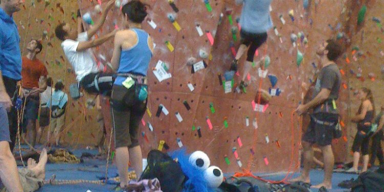 Cookie monster sighting. Mission cliffs climbing gym San Francisco, CA
