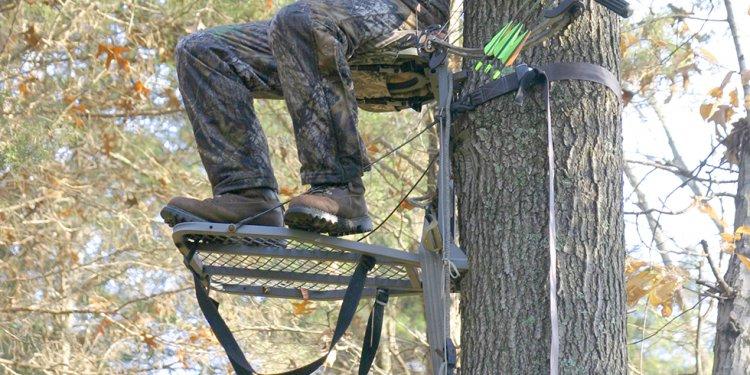 Defective Tree Stands Recalled