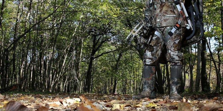 Early Season Bow Hunting Tree