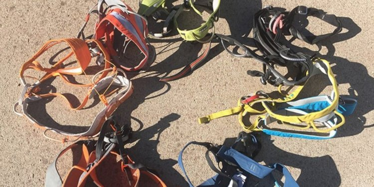 Best Climbing Harnesses of