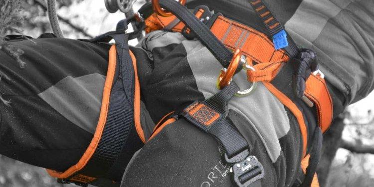TH5 Harness | Climbing