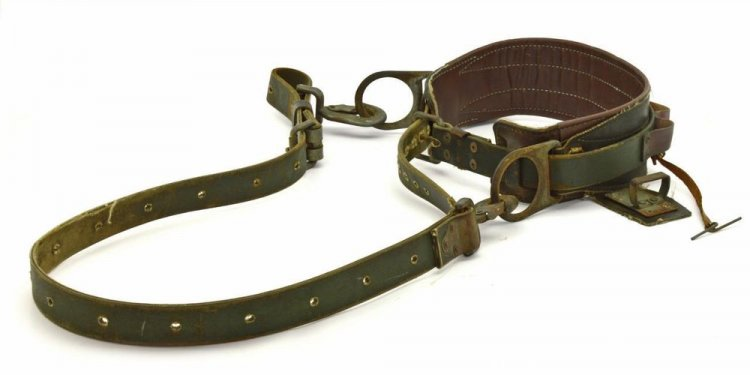 #3 Tree Climbing Safety Belts