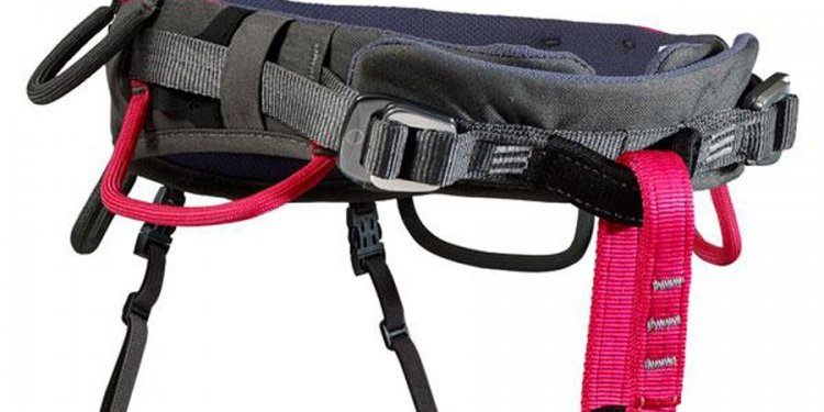 Pink Rock Climbing harness